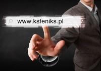 6'117 odsłon www.ksfeniks.pl i 678 polubień na FB w 2015